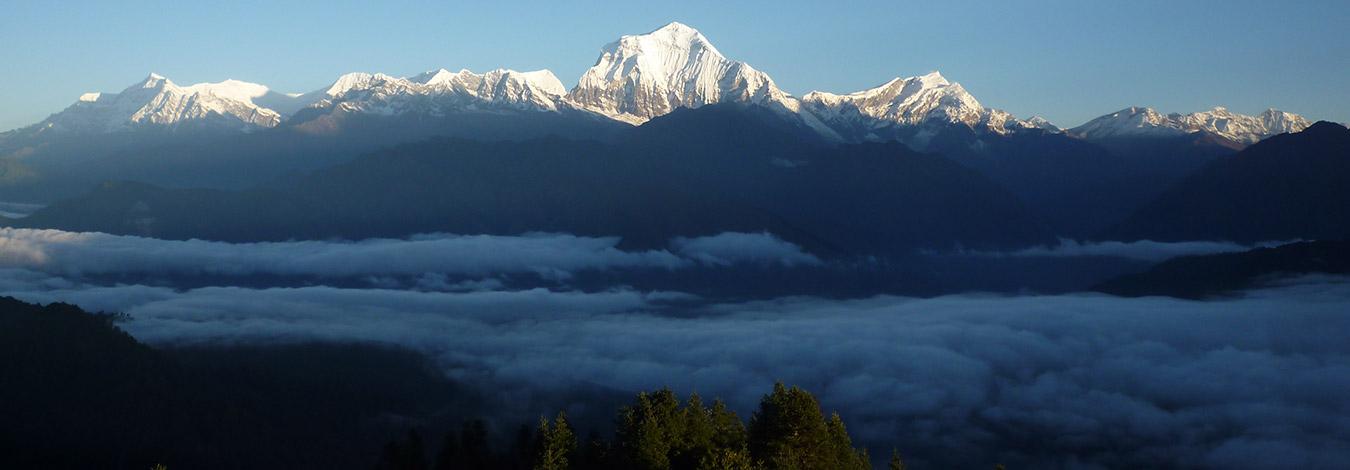 Dhaulagiri rising above clouds